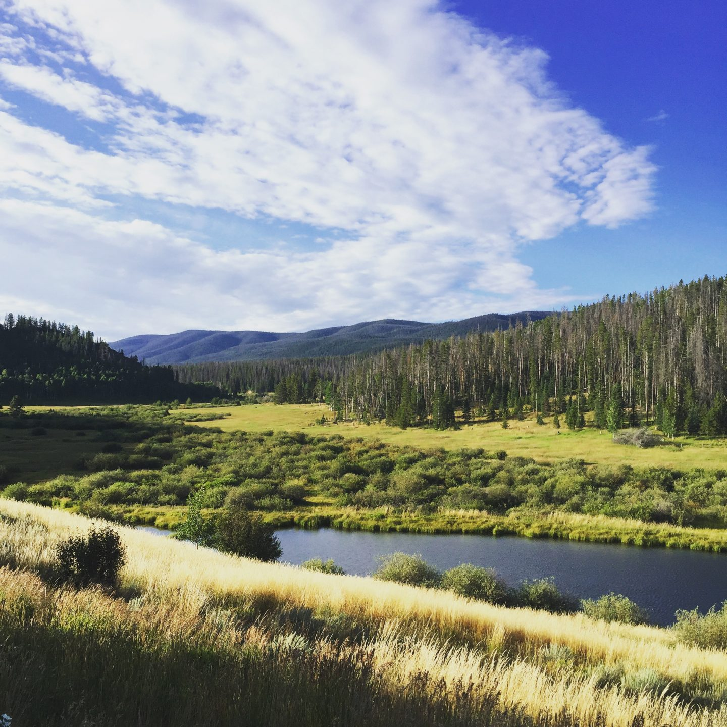 Summertime in Steamboat Springs, CO: Top Things to Do with Kids