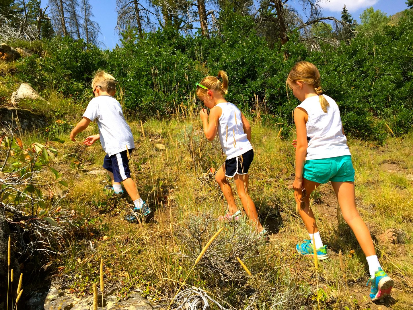 Hiking in Steamboat Springs, CO.