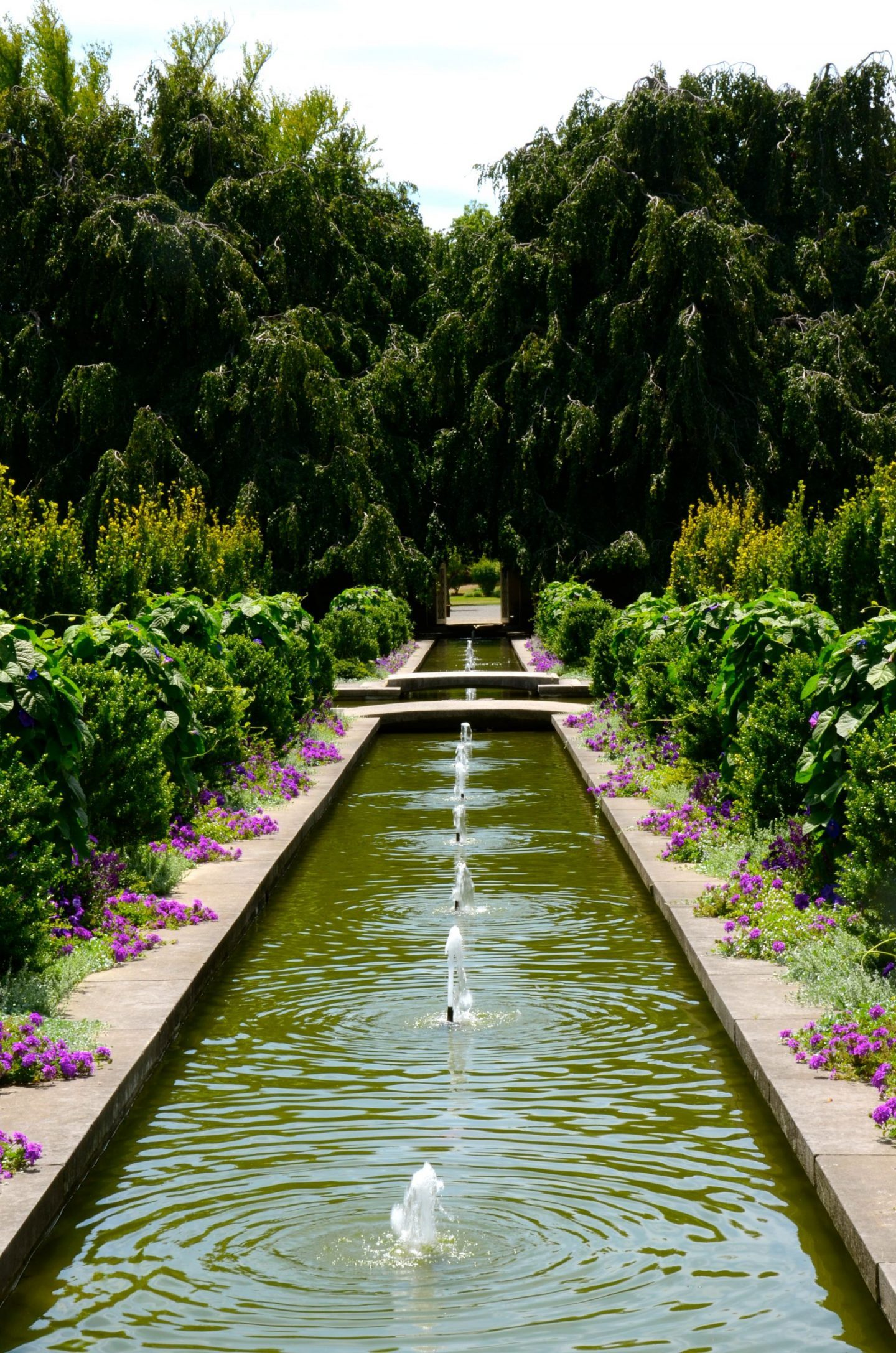 Water fountains and flowers in Untermyer Park and Gardens.