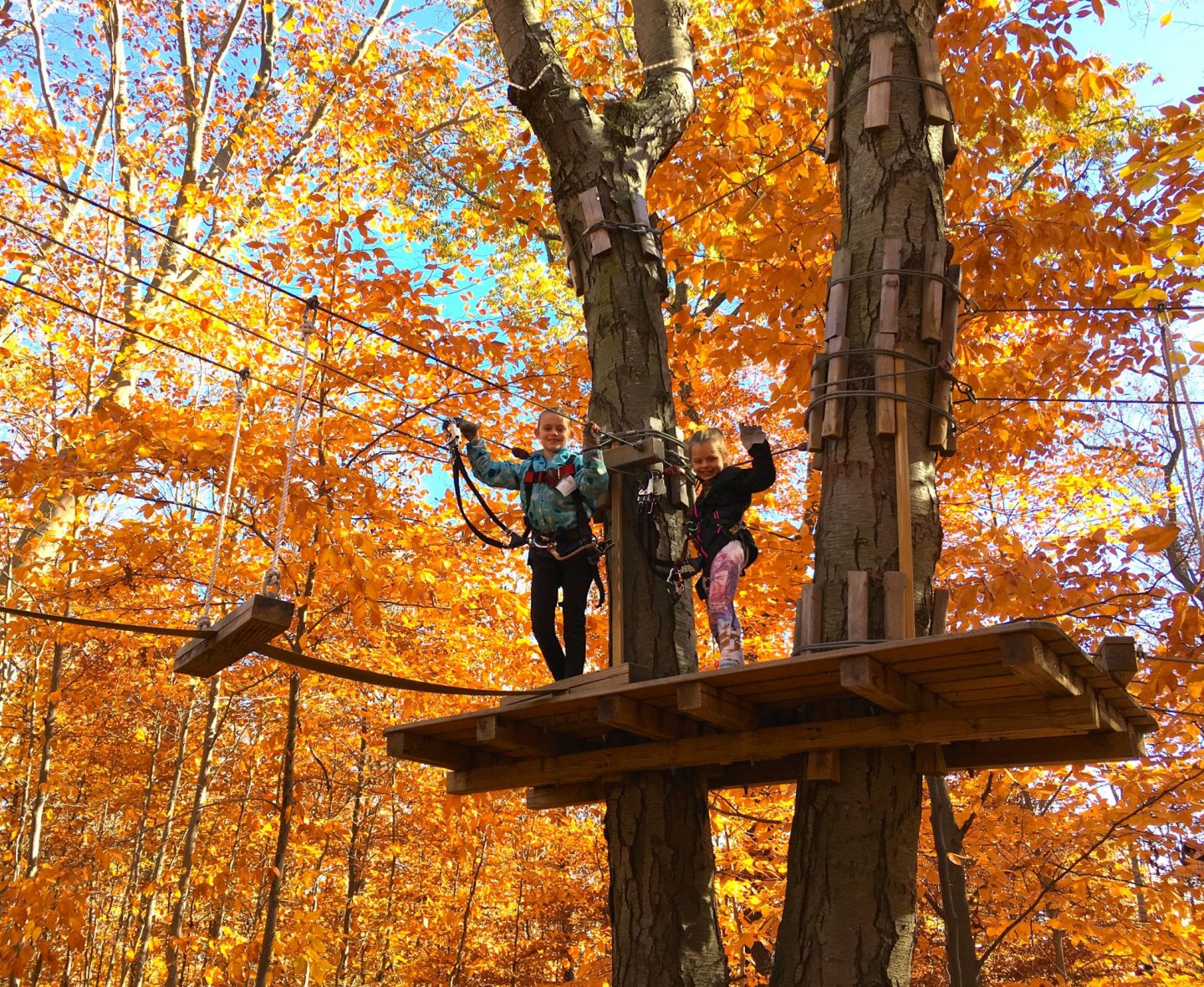 Zip Lining Anyone? Connecticut's Most Popular Obstacle Course