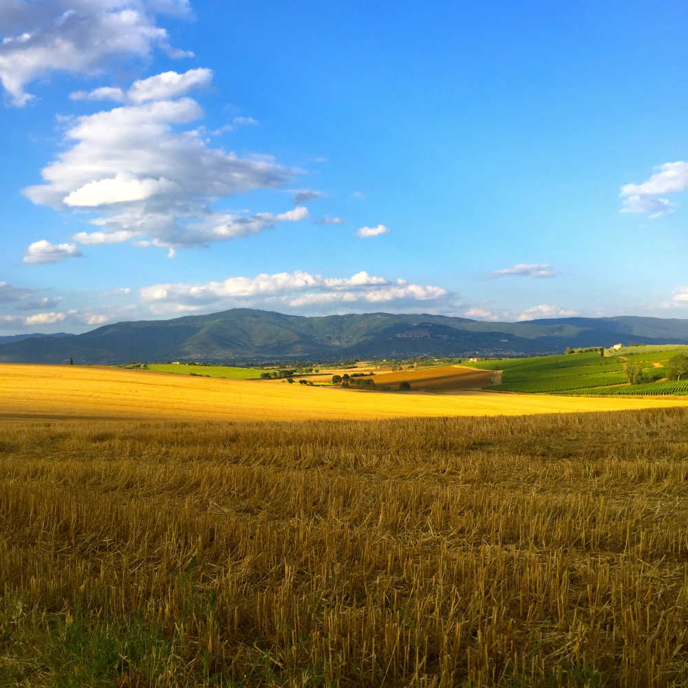 The countryside in Tuscany