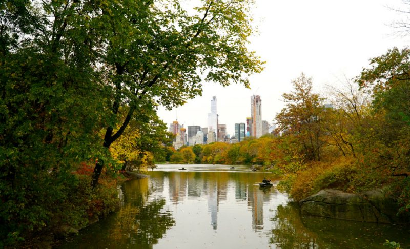 Walk through Central Park for 24 hours in New York City travel fix.