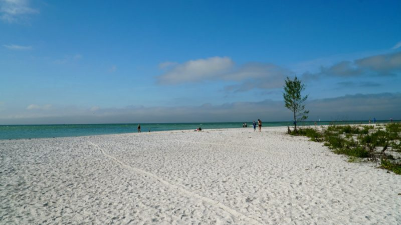 Beach walk on Keewaydin Island in Florida