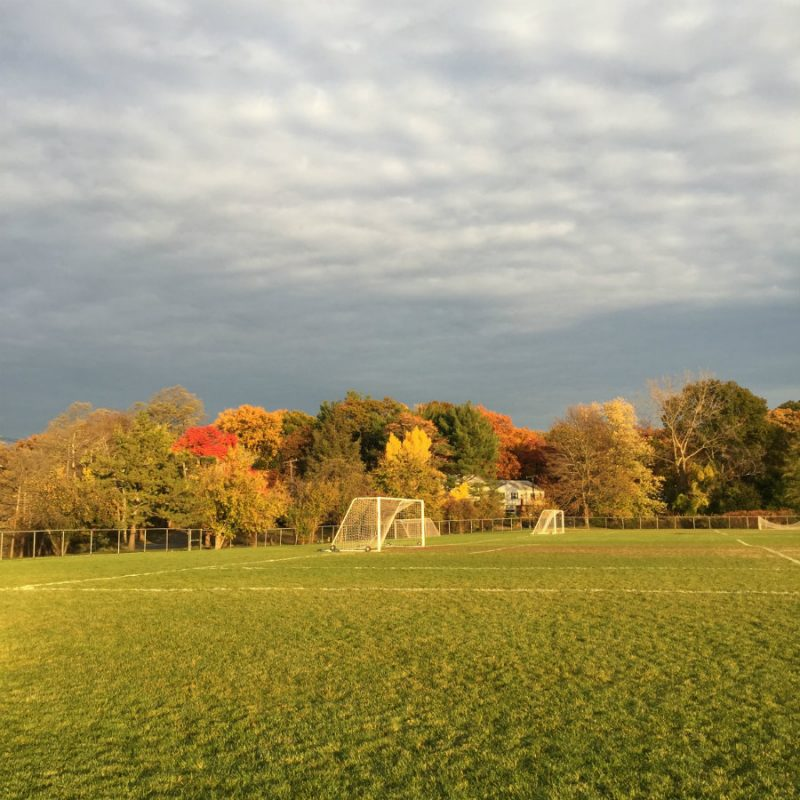 Fall at Flint Park in Larchmont, NY