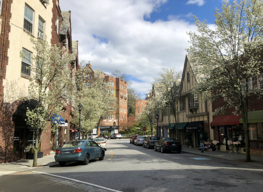 Westchester Snapshots: Life in the Village of Scarsdale